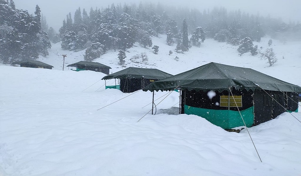 camp in chopta